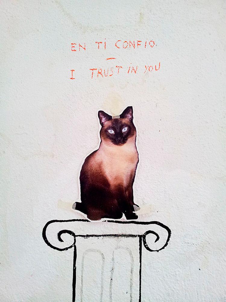 Lechuza y gato, 2014 - miscelanea