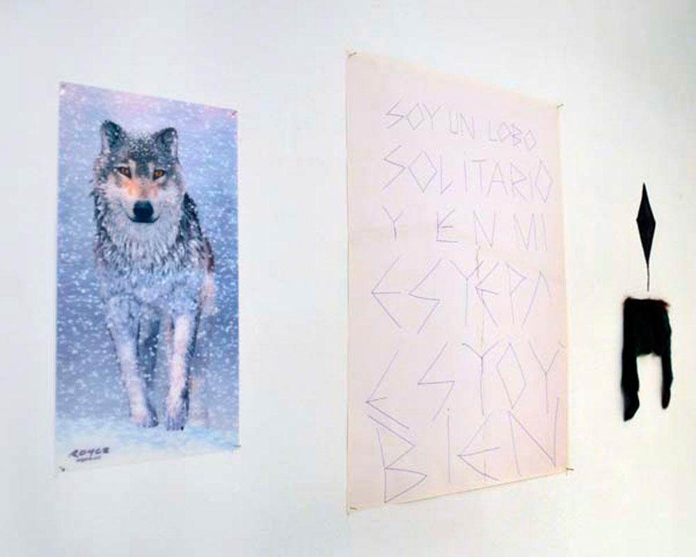 Lobo, 2012 - miscelanea